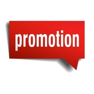 Articles en Promotion
